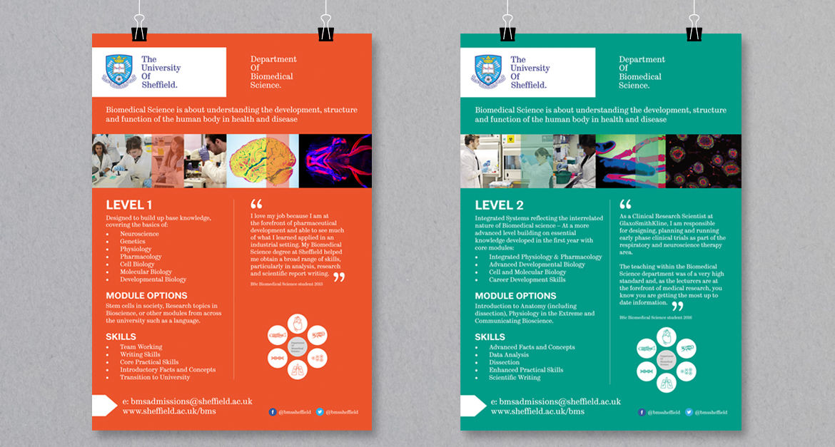 The University Of Sheffield - Print Design