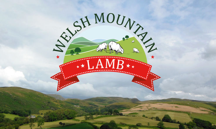 Welsh Mountain Lamb - Logo Design